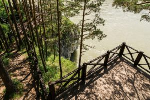 Пейзажы Парк-отель Шишка Горный Алтай