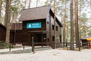 Домики Парк-отель Шишка Горный Алтай
